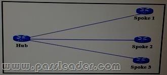 passleader-300-209-dumps-2471