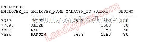 passleader-1Z0-051-dumps-312