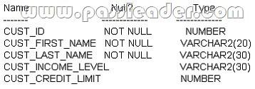 passleader-1Z0-051-dumps-1111