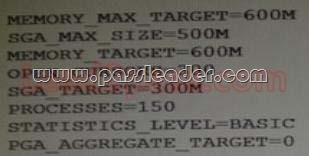 passleader-1Z0-060-dumps-281